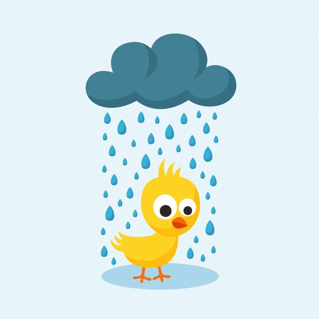 Ente unter Regenwolke